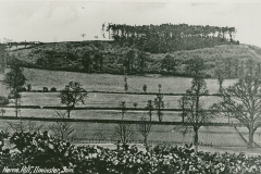 000895 Herne Hill from Shrubbery Hotel c1920