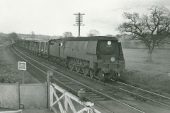 000497 Southern Railway's West Country Class freight locomotive number 34033 passing Chard Junction 1961