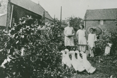 000944 Girls in a garden with geese c1920