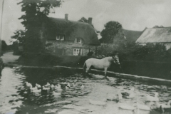 000762 Hunt's Cottage and pond c1930
