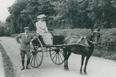 000549 Pony and trap, Ilminster c1900